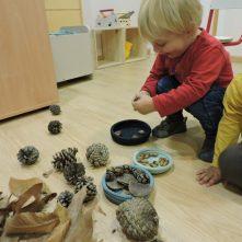 Nens experimentant amb elements de la tardor