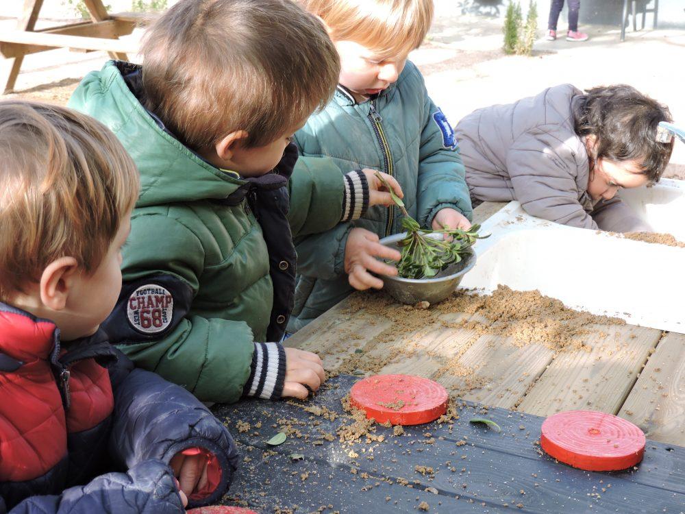 Un infant posa plantes dins l'olla d'un altre.