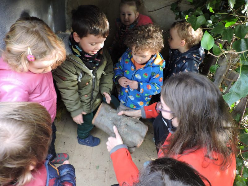 Els infants al jardí de l'escola trobant el tió